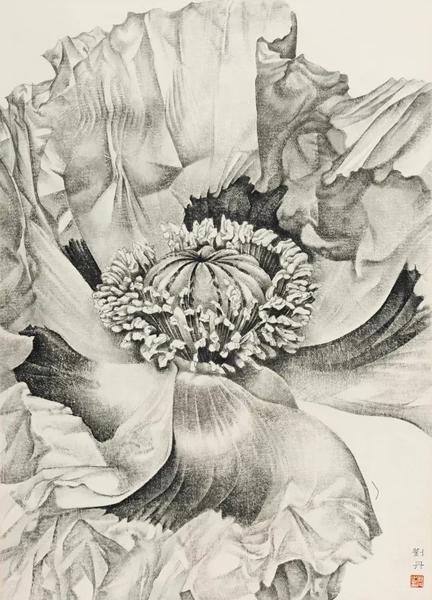 刘丹 罂粟花