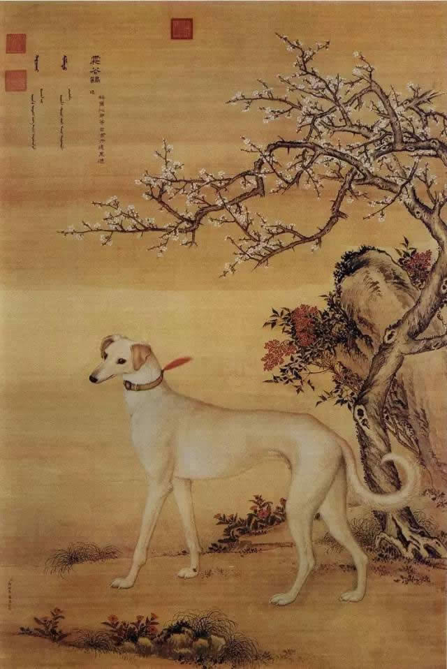 郎世宁《十骏犬之霜花鹞图》