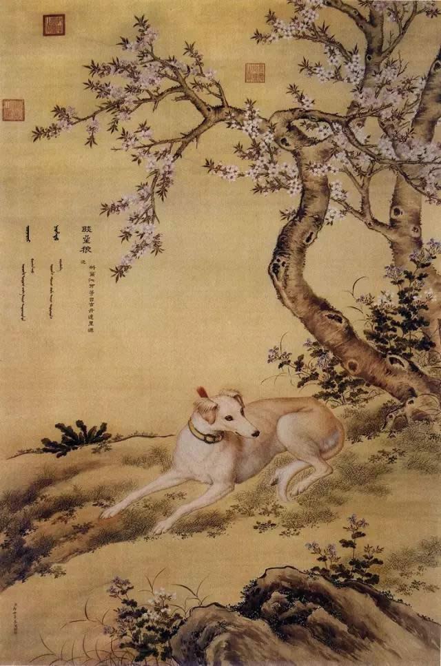 郎世宁《十骏犬之睒星狼图》