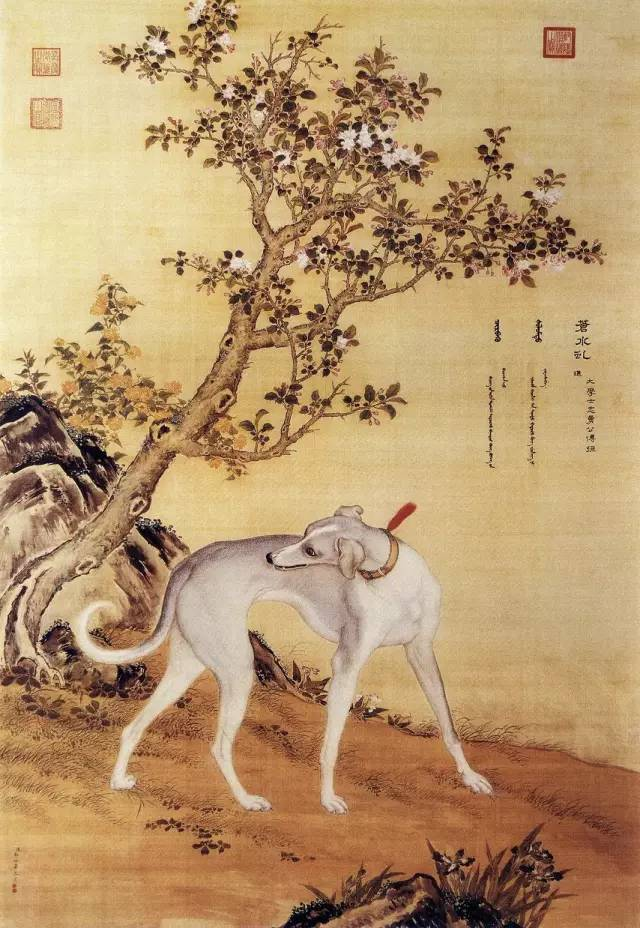 郎世宁《十骏犬之苍水虬图》