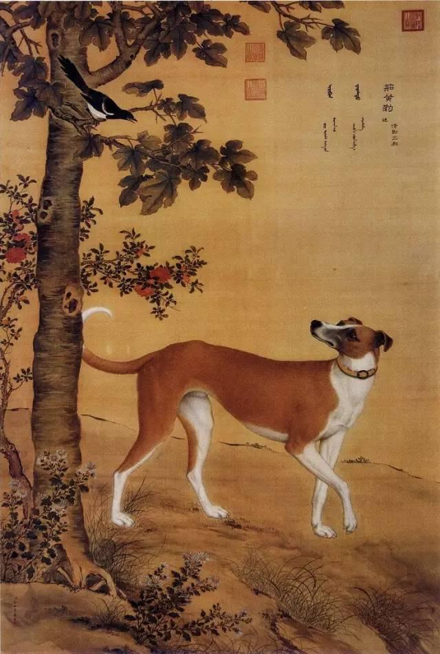 郎世宁《十骏犬之茹黄豹图》