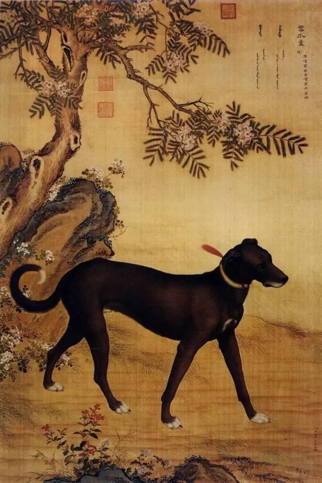 郎世宁《十骏犬之雪爪卢图》