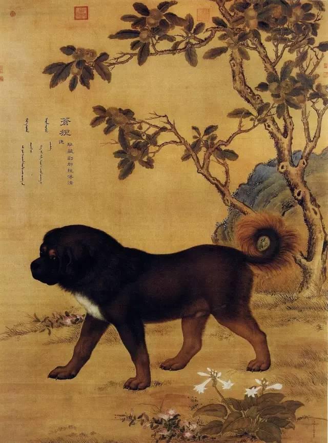 郎世宁《十骏犬之苍猊图》