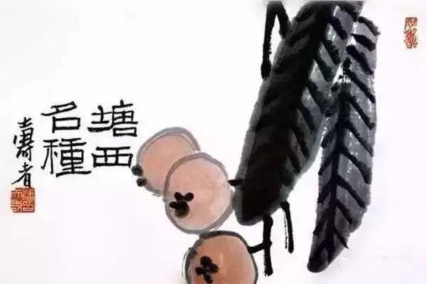 潘天寿《塘西名种》