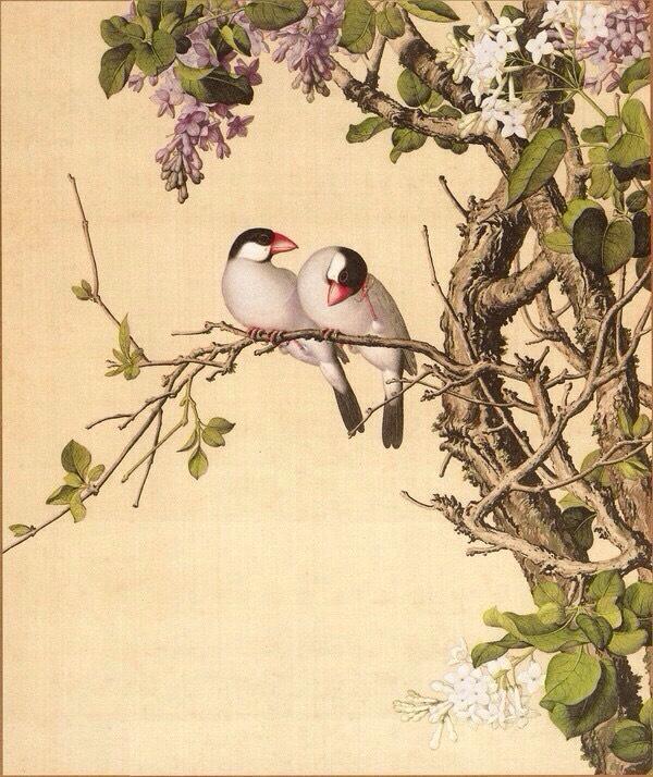 10.紫白丁香