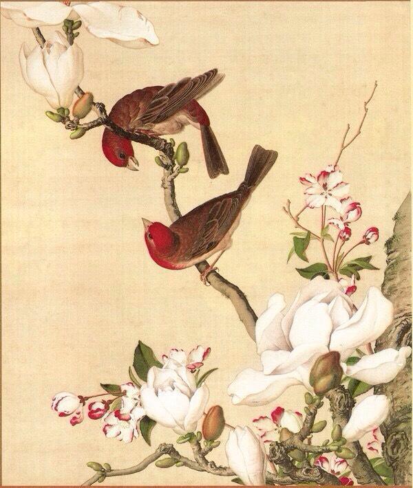 04.海棠与玉兰