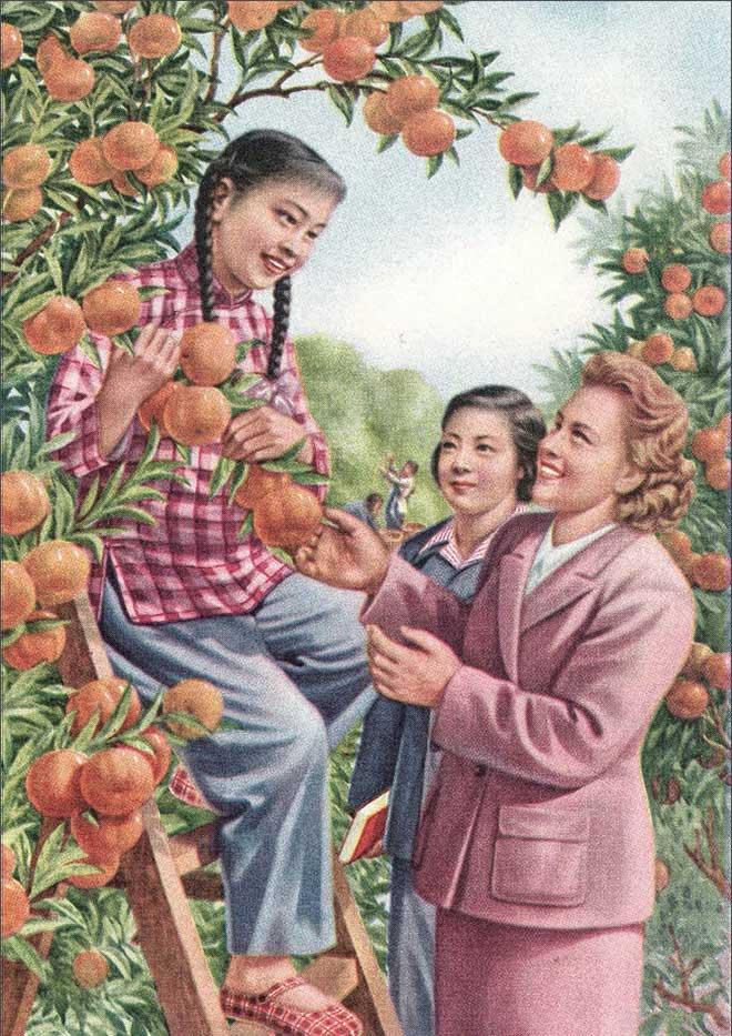 柑橘丰收(张碧梧忻礼良 作)