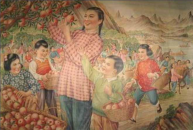 荒山变果园(杨馥如 1954)
