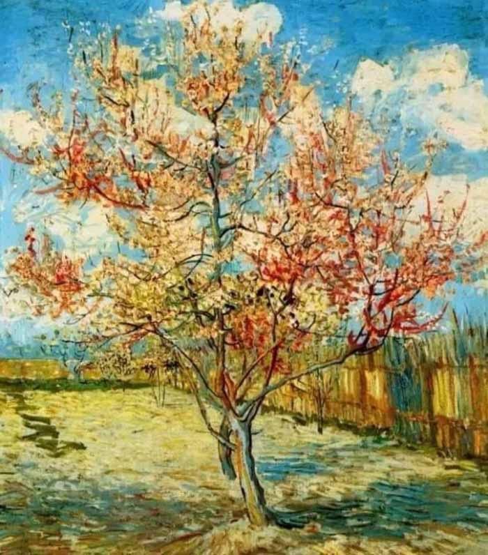 《盛开的桃花》 梵高
