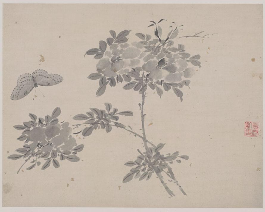 杜大成《花卉草虫图册》图赏